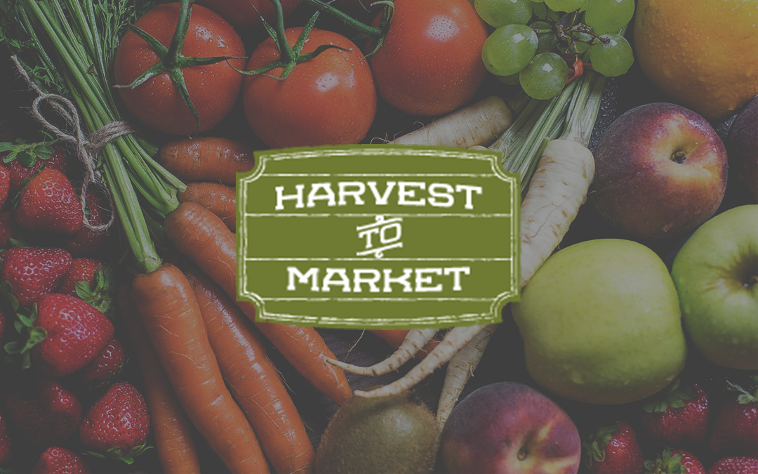 Harvest to Market