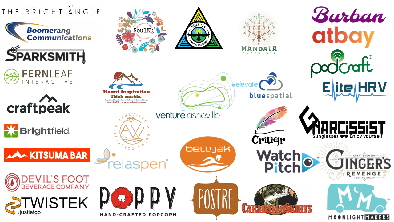 Venture Asheville Elevate - Mentor & Entrepreneurship Program